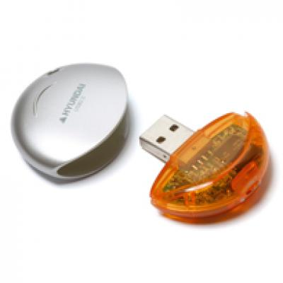 Image of Disk USB FlashDrive