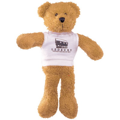 Image of 9 inch Scraggy Bear with White T Shirt